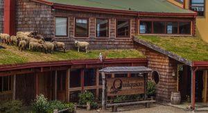 8 hoteles sustentables en chile